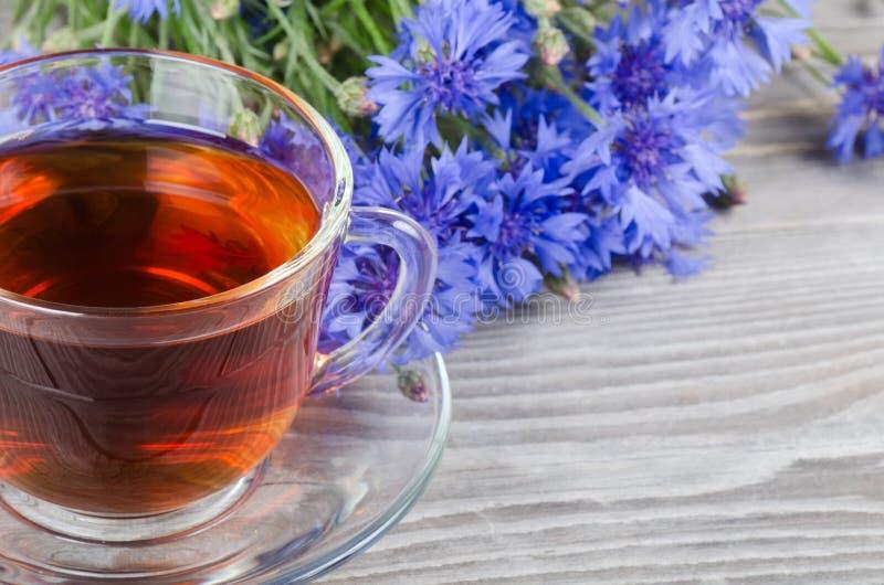 Tazza di vetro con un tè del cornflower fotografia stock