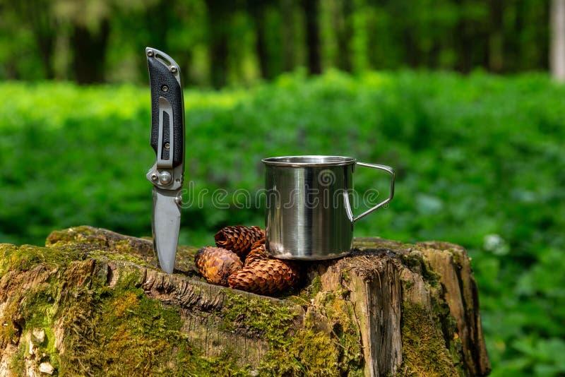 Tazza e coltello d'acciaio turistici nella foresta di estate fotografia stock