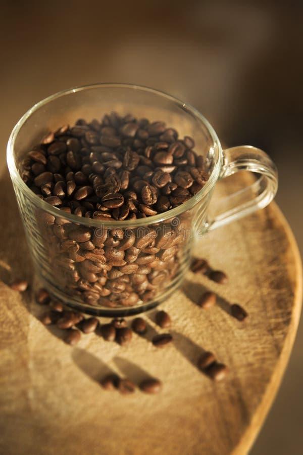 Tazza trasparente con i chicchi di caffè immagine stock