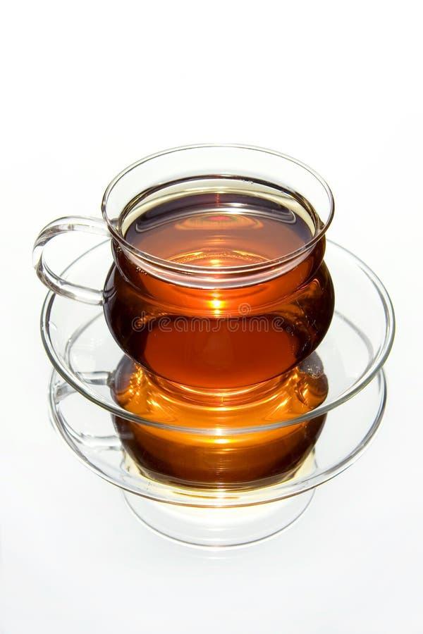 Tazza trasparente di tè fotografia stock