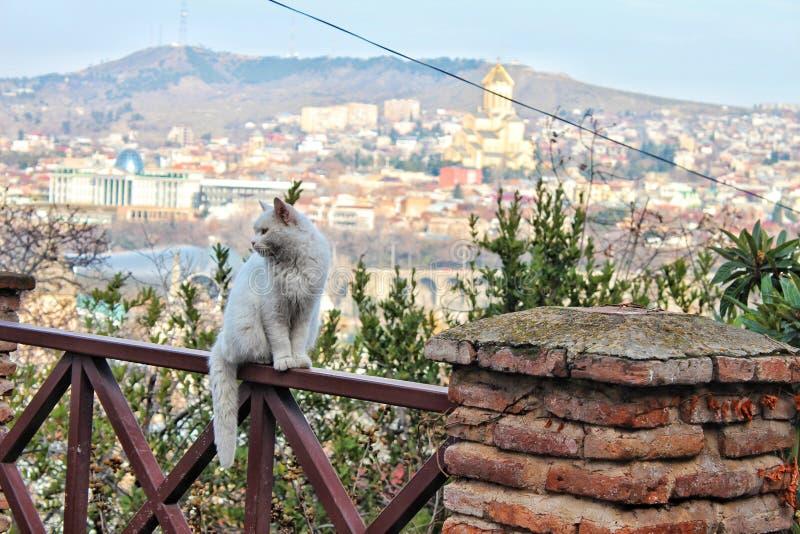 Tbilisi photographie stock libre de droits