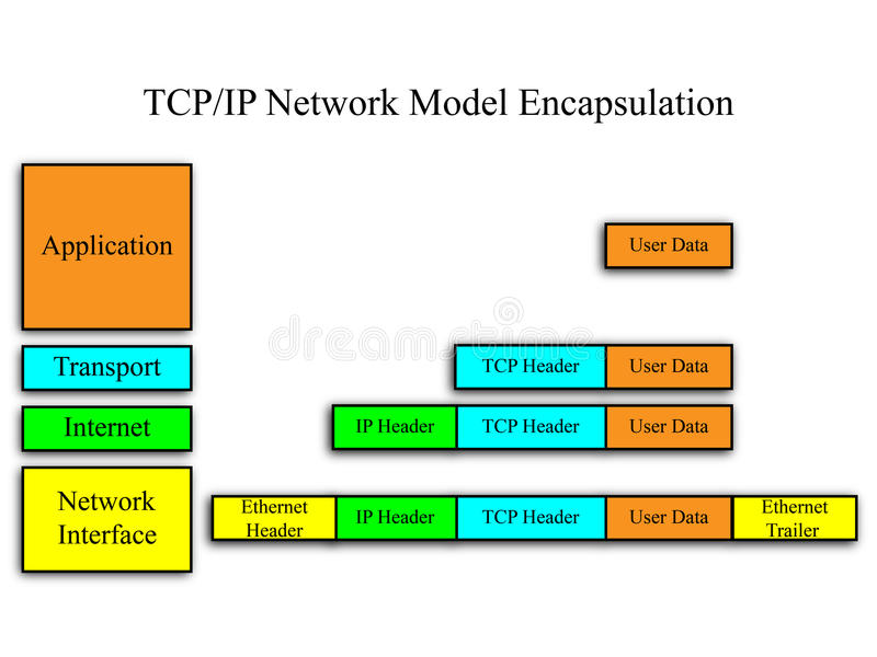TCP/IP Network Model vector illustration