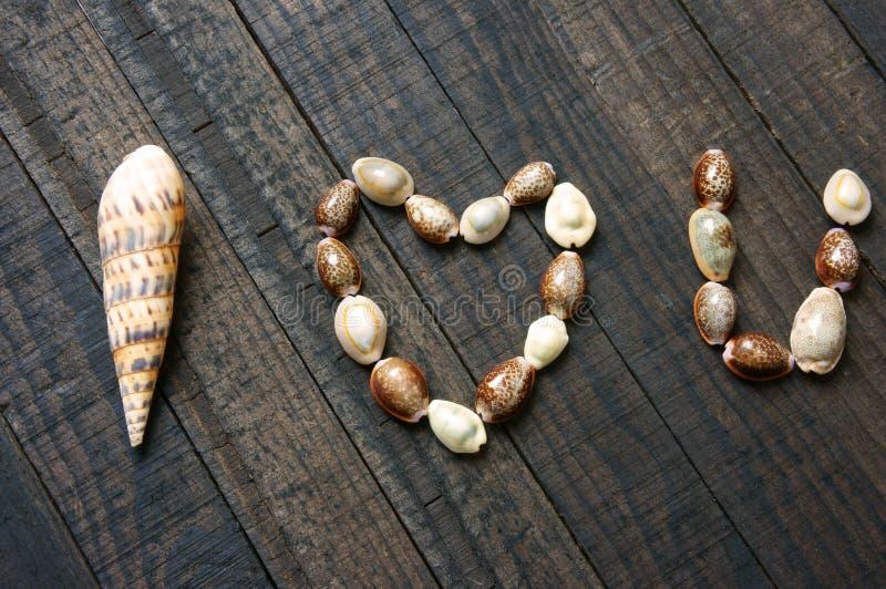 Te amo, cáscara, forma del corazón, día de San Valentín foto de archivo libre de regalías