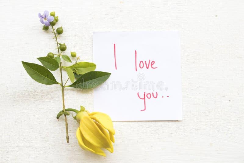 Te amo escritura de la tarjeta del mensaje con la flor del ylang fotos de archivo libres de regalías