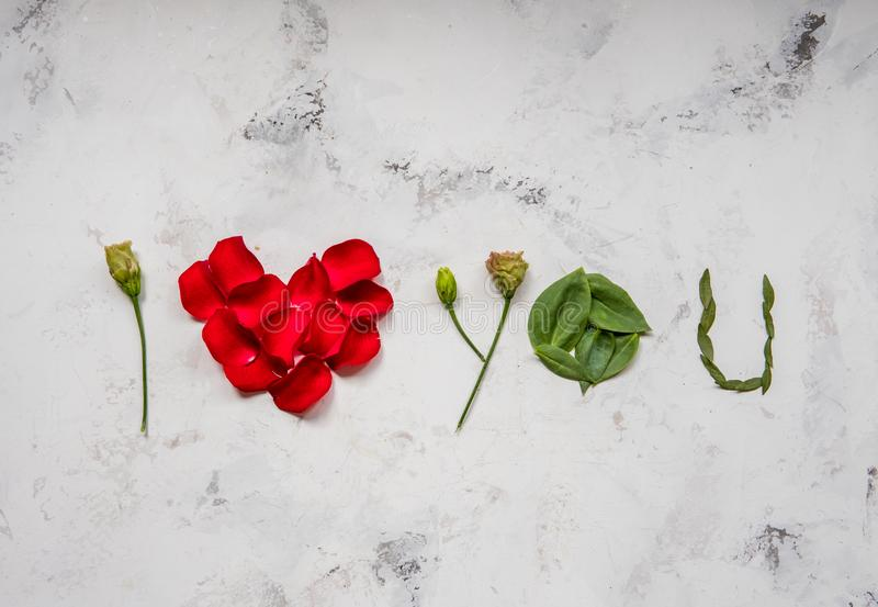 Te amo - hecho de flores, de pétalos y de hojas imagen de archivo libre de regalías
