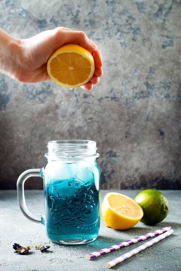 Te eller lemonad för blått för blomma för fjärilsärta med is Växt- drink för sund detox royaltyfri foto