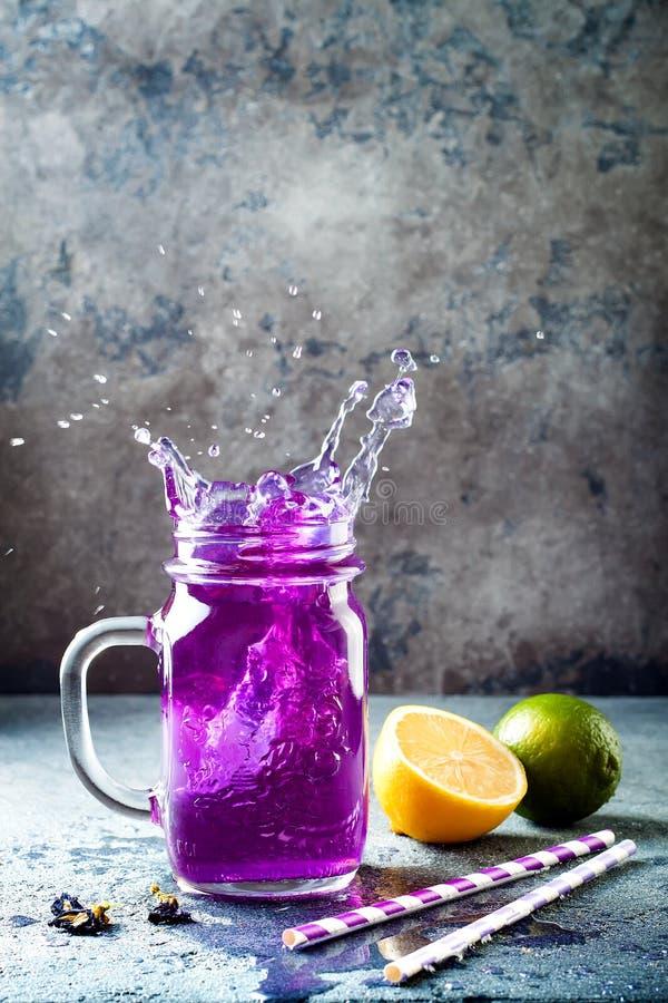 Te eller lemonad för blått för blomma för fjärilsärta med is Växt- drink för sund detox arkivbilder