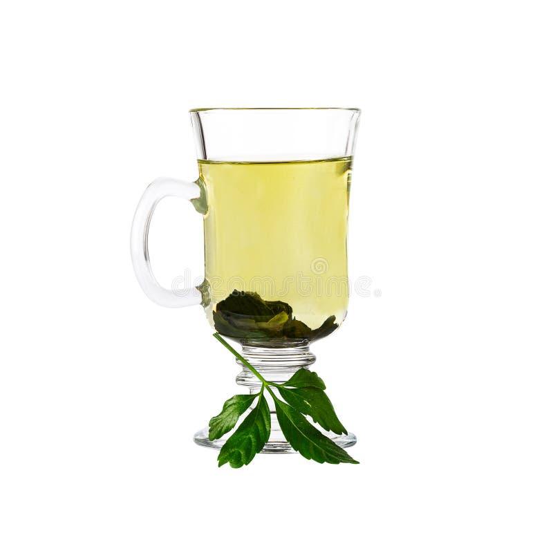Te för ört för Jiaogulan mirakelgräs kinesiskt Inklusive snabb bana f?r bild royaltyfri fotografi