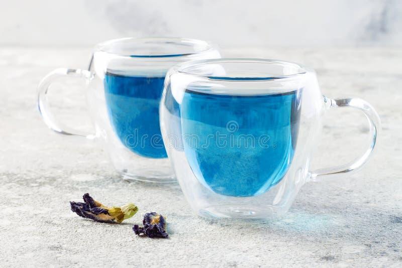 Te för blått för blomma för fjärilsärta Växt- drink för sund detox royaltyfri fotografi