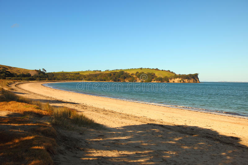 Download Te Haruhi Beach Walkway immagine stock. Immagine di paesaggio - 56879905