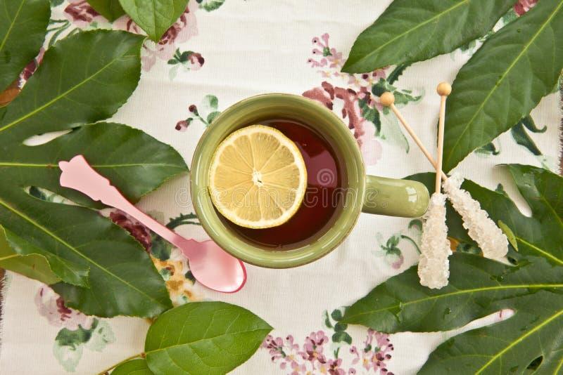 Te i en gräsplan rånar arkivfoto