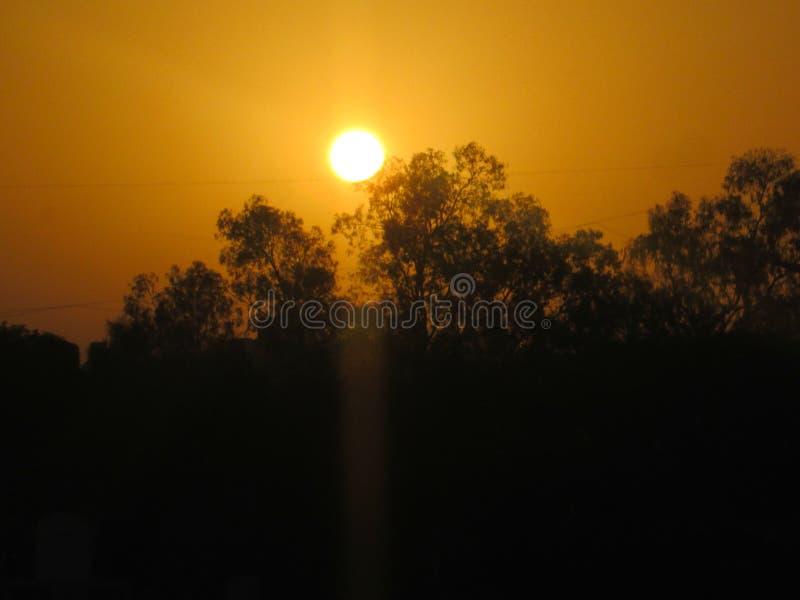 Te kleine zon stock foto