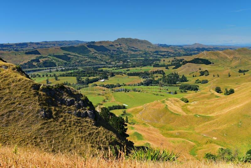 Te Mata Peak en omringend landschap in Hastings, Nieuw Zeeland royalty-vrije stock foto