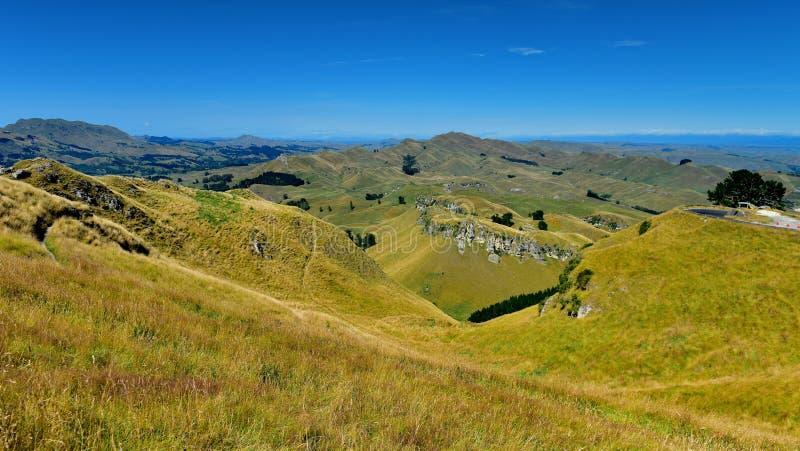 Te Mata Peak en omringend landschap in Hastings, Nieuw Zeeland stock afbeeldingen