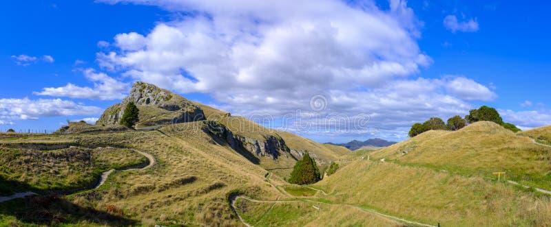 Te Mata Peak i Nya Zeeland royaltyfri foto