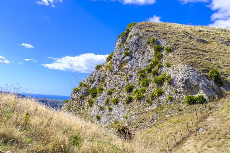 Te Mata Peak in Neuseeland lizenzfreie stockfotos