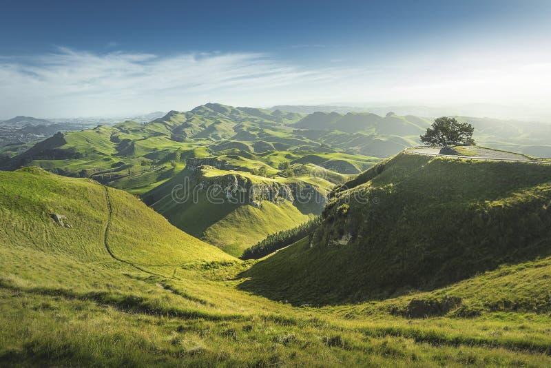 Te Mata Peak, Nueva Zelanda fotos de archivo