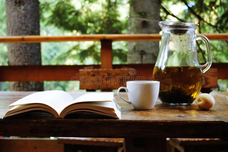 Te med en bok i naturen royaltyfria foton