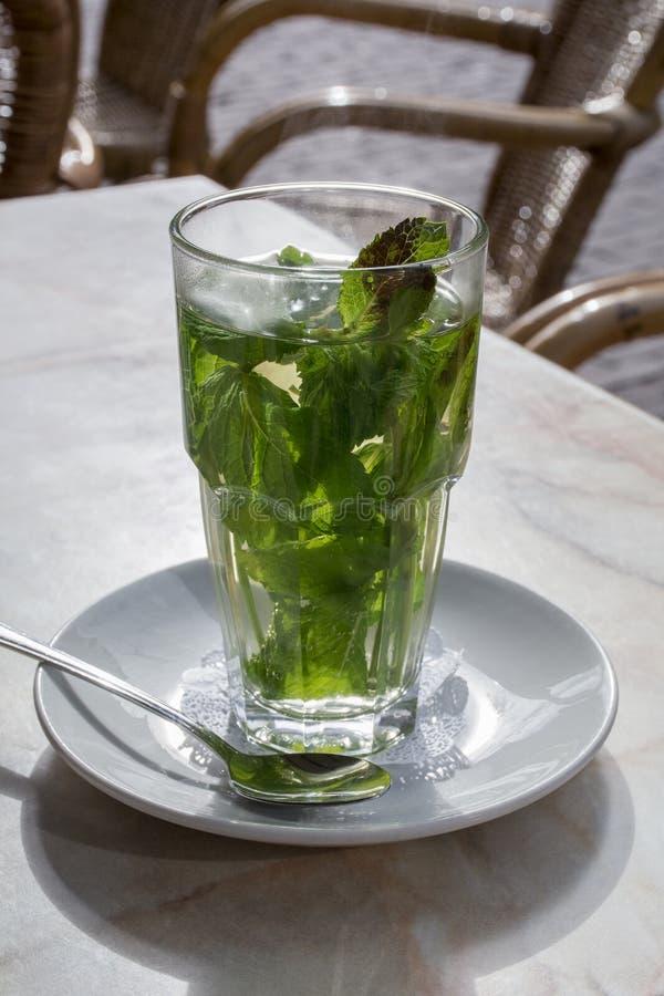 Te med mintkaramellen i exponeringsglaset på det vita tefatet royaltyfria foton