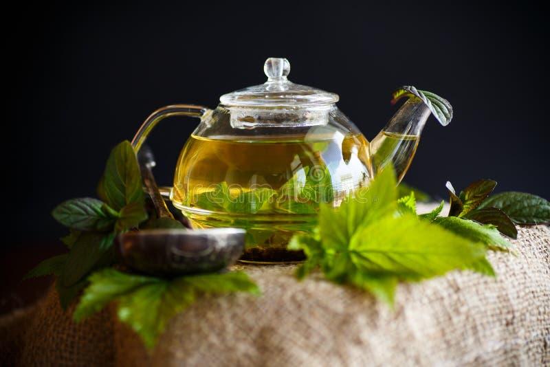 Te med vinbärsidor arkivbild