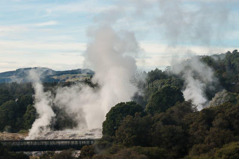 Te Puia w Rotorua obrazy stock