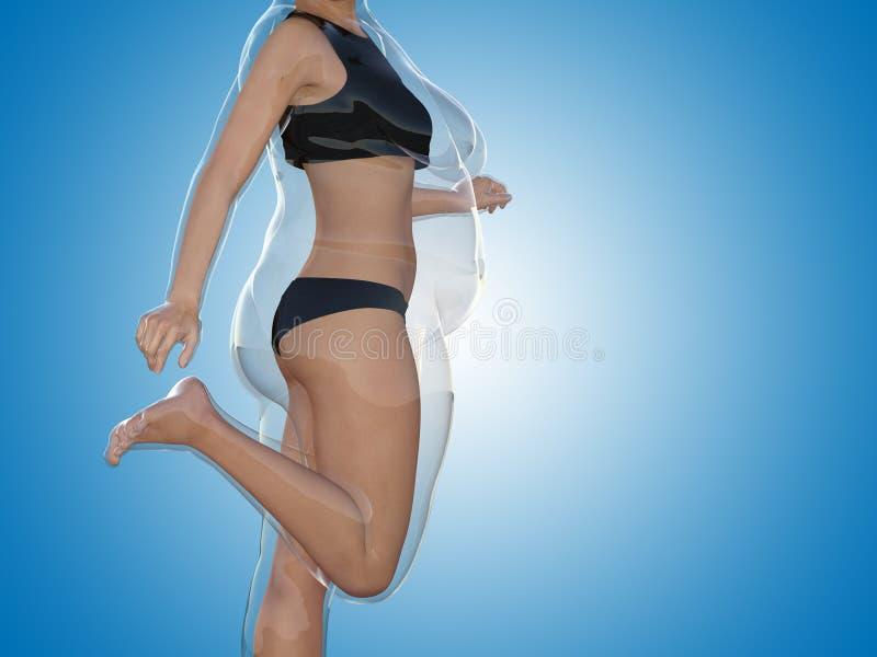 Te zwaar wijfje versus slank geschikt gezond lichaam stock illustratie