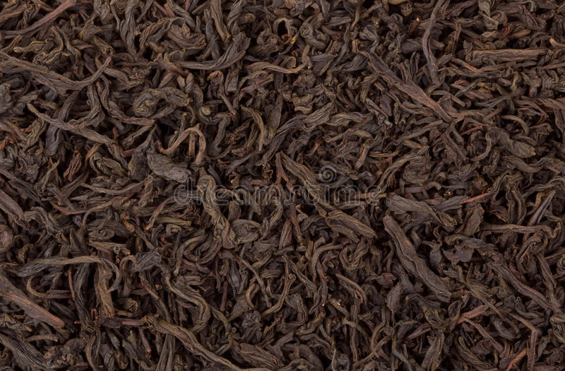Download Tea stock photo. Image of taste, leafs, concepts, gourmet - 25937942