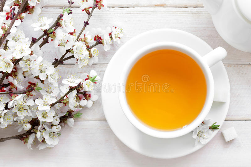 Download Tea stock photo. Image of nature, morning, background - 38348764