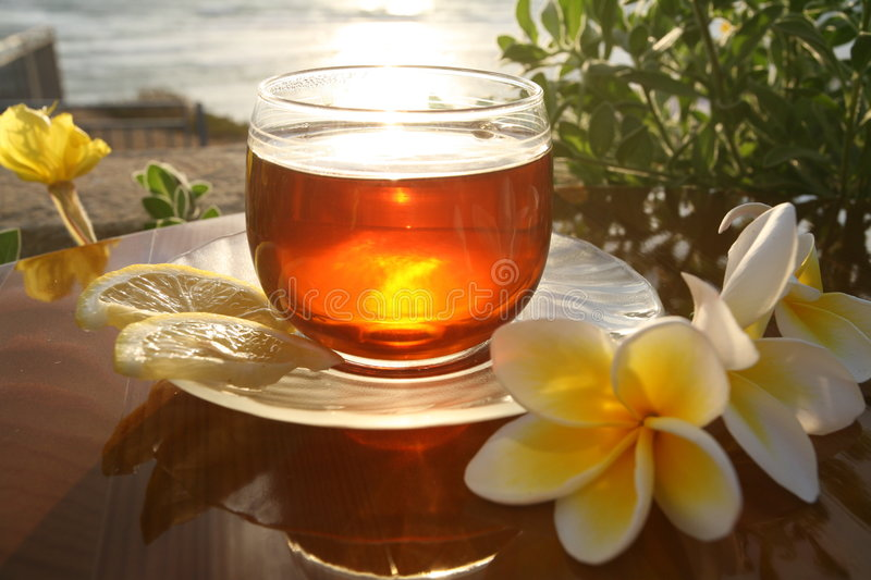 Cup of tea on the sea royalty free stock photography