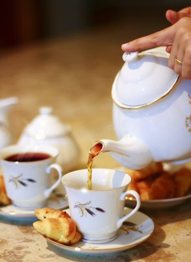 Free Tea Stock Photo - 6004110