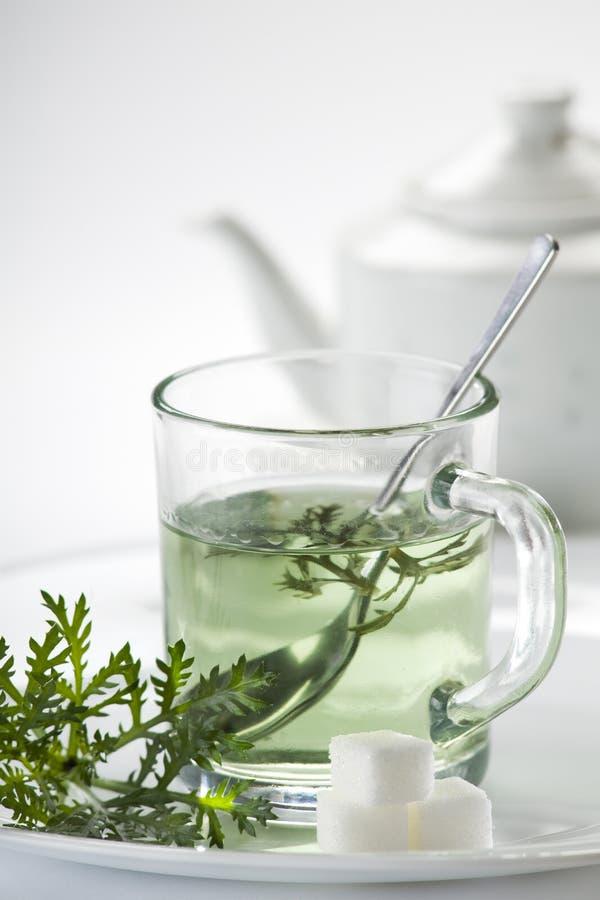 Tea. Green tea with herbs close up shoot stock photos