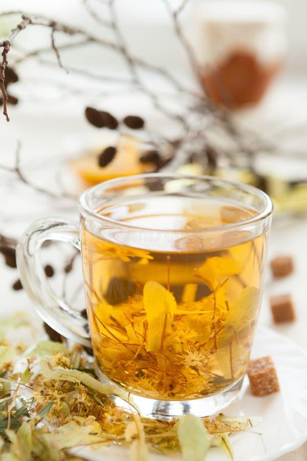 Tea av limefruktblomningen med honung fotografering för bildbyråer