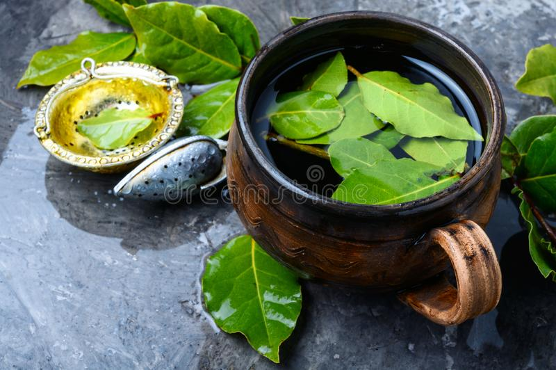 Tea with bay leaf. Herbal tea with bay leaf.Brewed delicious herbal tea stock photos