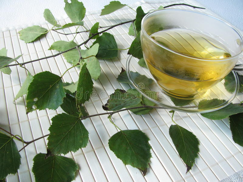 Tea With Birch Leaves Stock Images