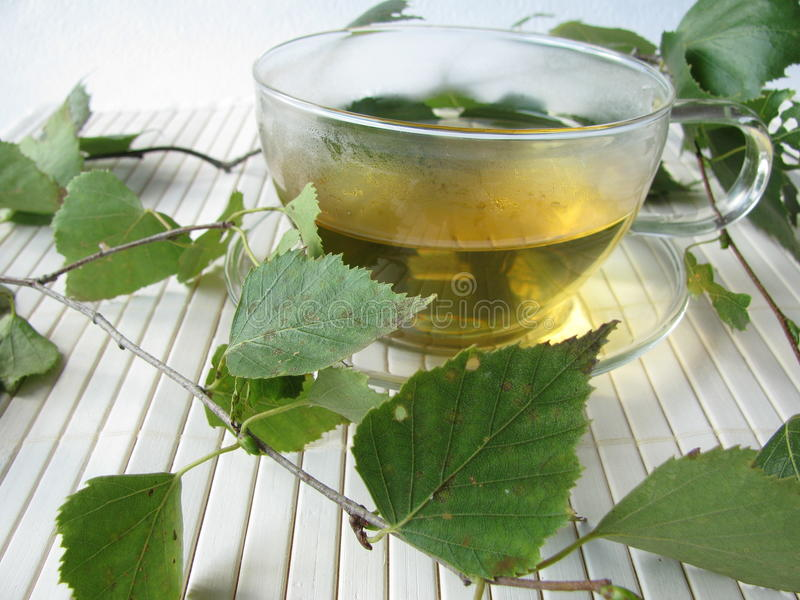 Tea With Birch Leaves Royalty Free Stock Photos