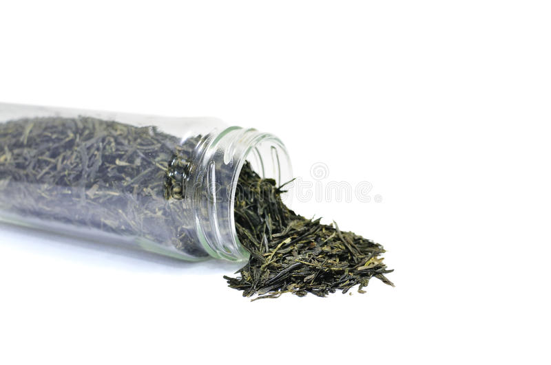 Tea in Bottle royalty free stock photography
