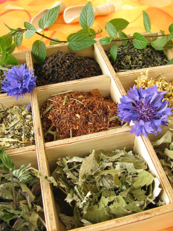 Tea box with loose tea types royalty free stock photo
