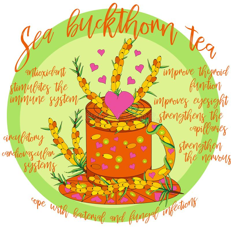 Tea Branding and Packaging with Cup of tea with Sea buckthorn royalty free illustration