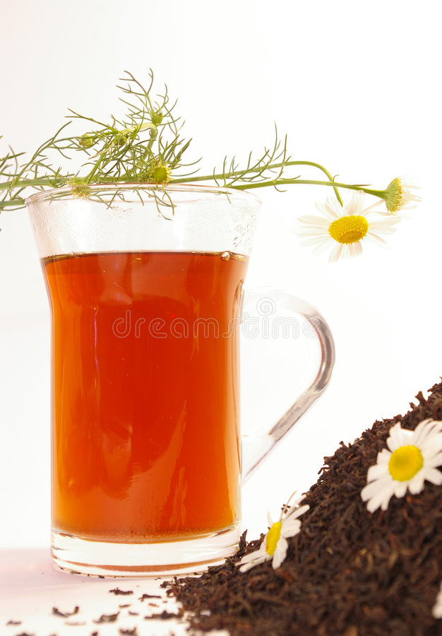 Tea and camomile royalty free stock image
