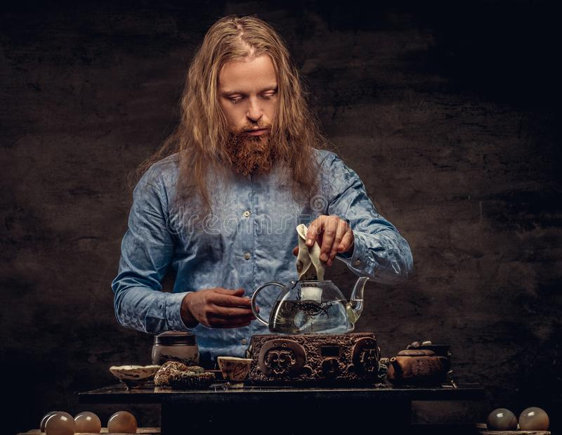 Tea ceremony concept. Portrait of a redhead hipster male with long hair and full beard dressed in a blue shirt. Concentrates on making tea, using a handmade royalty free stock photo