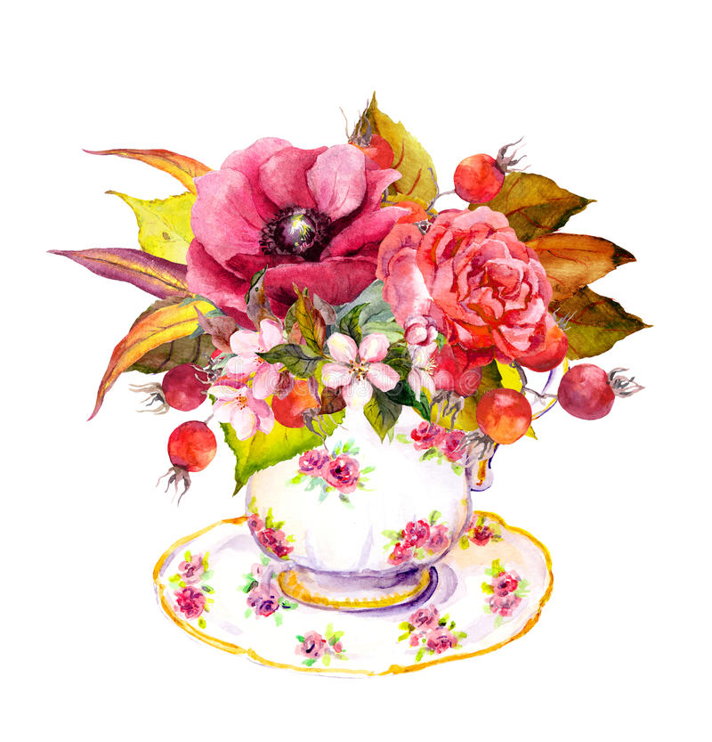 Tea cup - autumn leaves, rose flowers, berries. Watercolor. Tea cup design with rose flowers, autumn leaves, berries and vintage feathers. Autumn watercolor for vector illustration