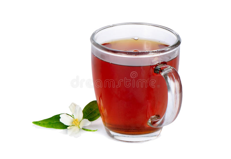 Tea in cup isolated. Green jasmine tea in cup isolated on white background royalty free stock image