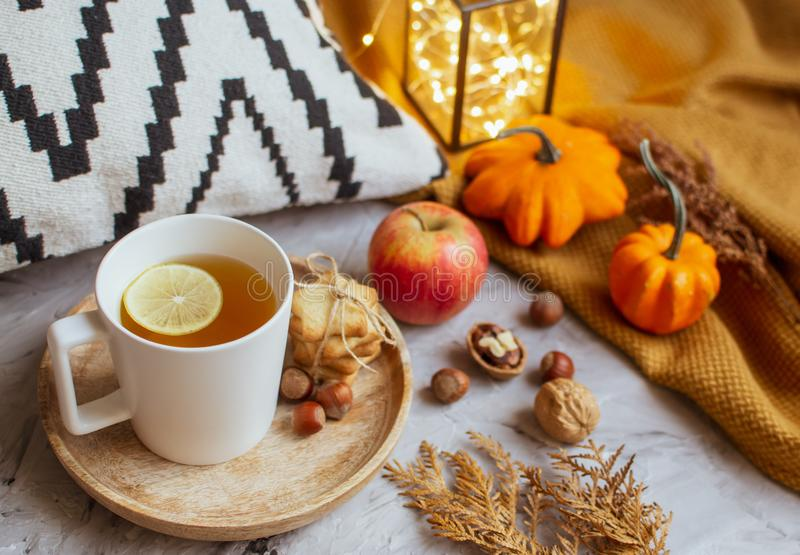 Tea Cup with Lemon Cookies Autumn Time Apple Pumpkin Toned Photo Knitting Orange Blanket Yellow Leaves Gray royalty free stock images
