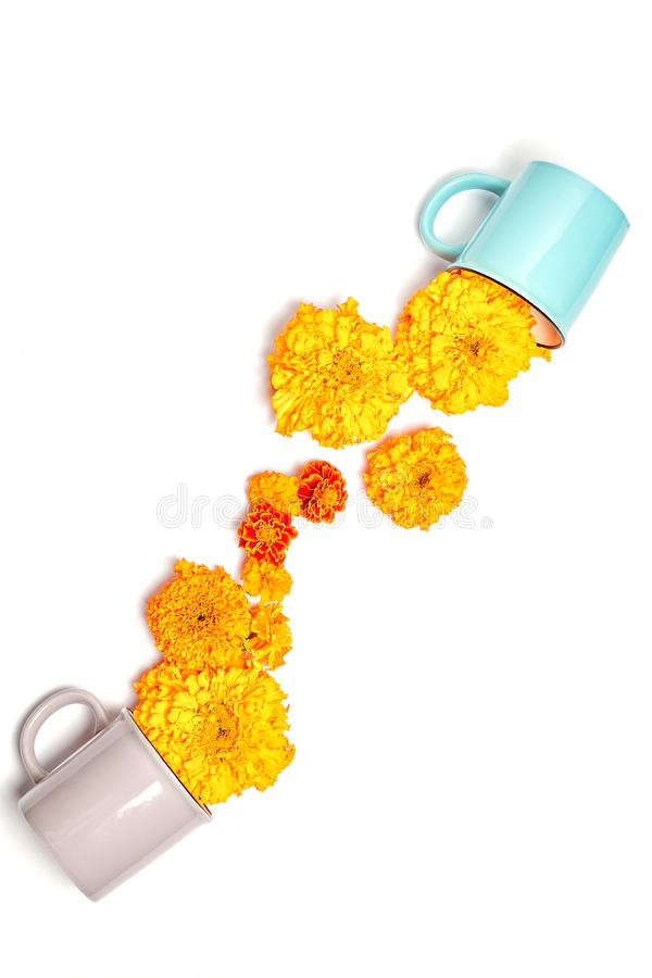 Tea cups with fresh orange marigold flowers. Minimal concept on white background. Flat lay, top view, vertical frame royalty free stock images