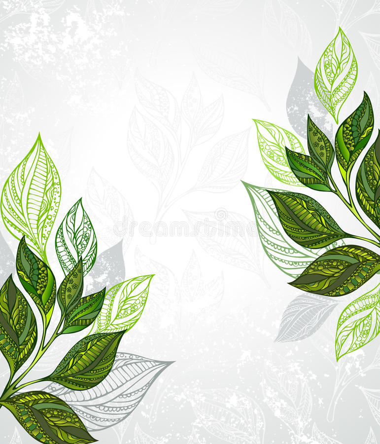 Tea design. Design with patterned, green and gray leaves of tea on a gray textural background. Tea design stock illustration