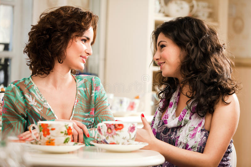 A Tea Discussion royalty free stock photography