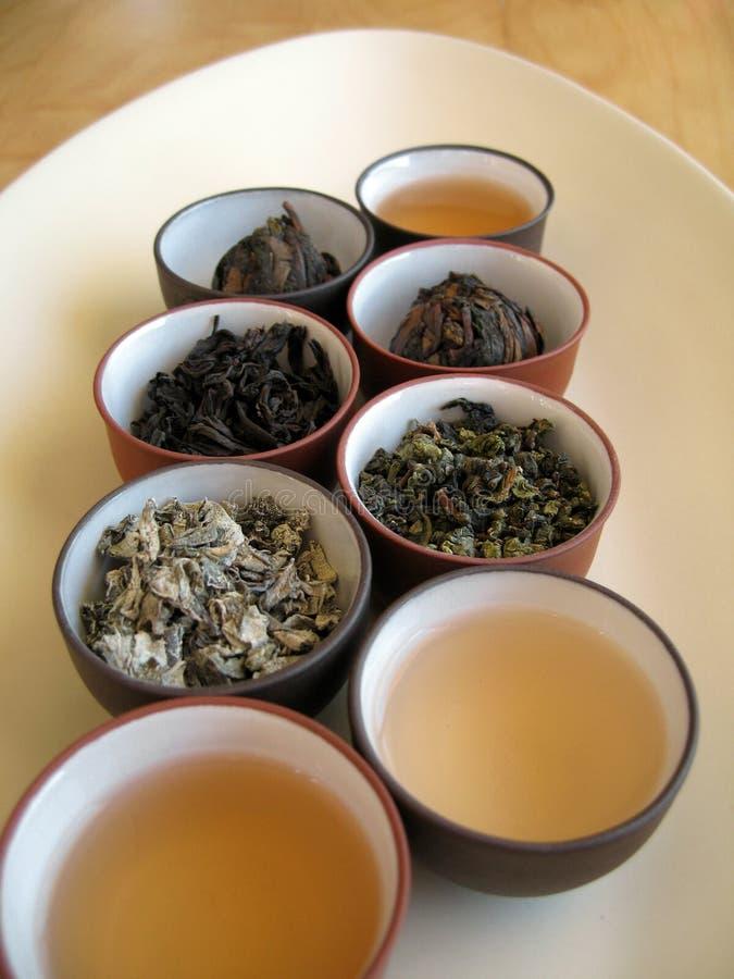 tea för kines 4 royaltyfri foto
