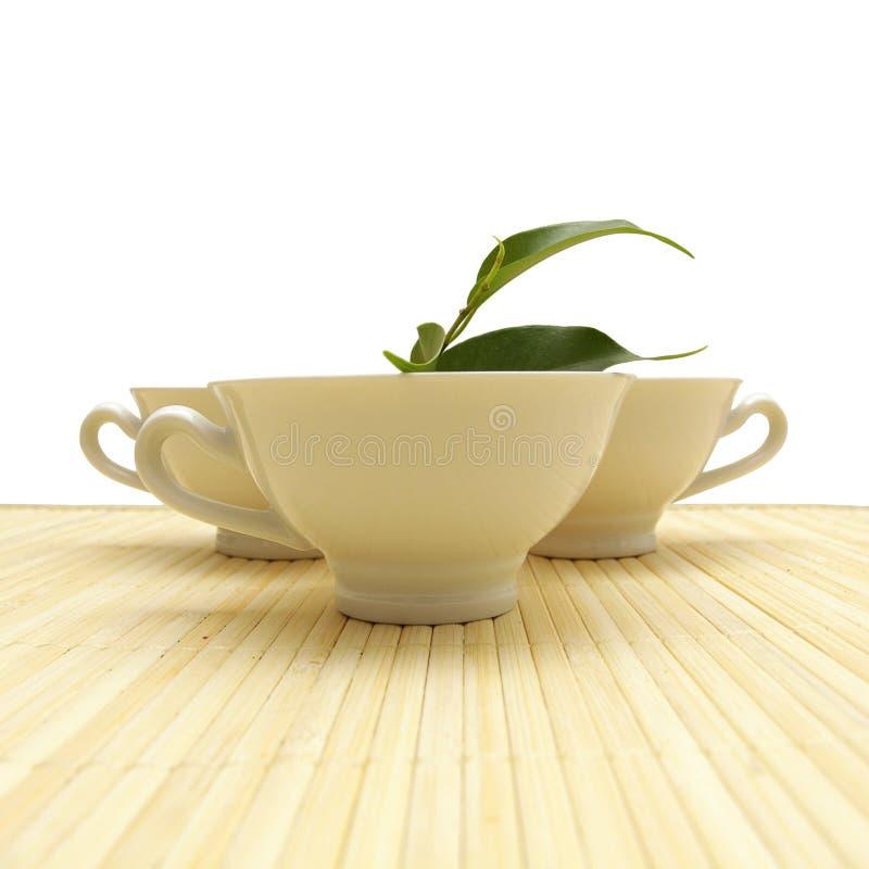 tea för livsstil för concekopp sund royaltyfri foto