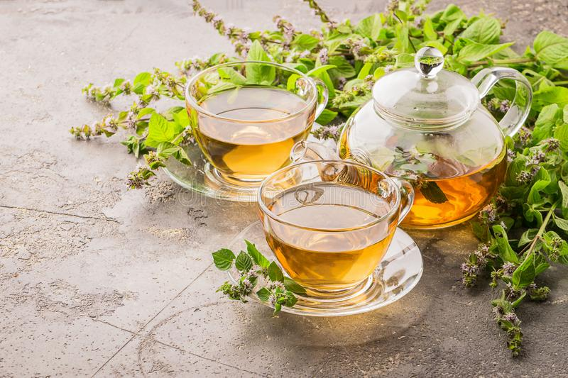 Tea with fresh leaves of lemon mint cup and teapot gray background. Healing herbal drink. Horizontal frame. Tea with fresh leaves of lemon mint in a cup and stock photos
