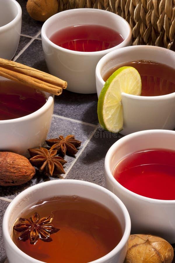 Tea - Herbal and Fruit Teas royalty free stock photos